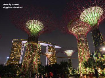 來到新加坡  才發現這裡的夜景是如此迷人