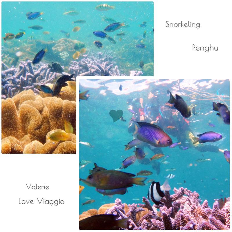 29753747813_f4d6316dc5_h @薇樂莉 Love Viaggio | 旅行.生活.攝影