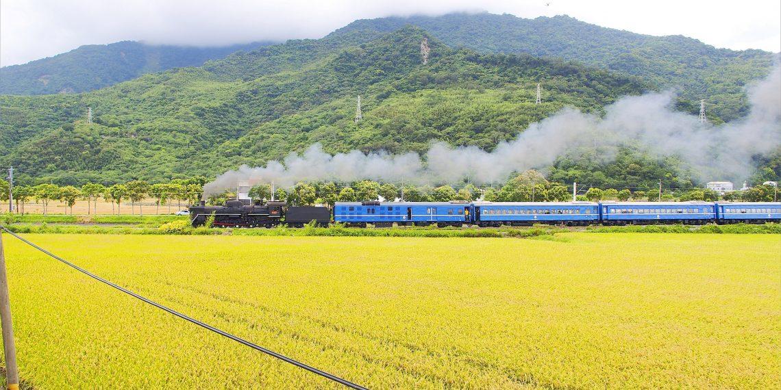 【台東 Taitung】行駛台東稻田間的蒸氣老火車 台鐵仲夏寶島號 捕捉感動的一刻