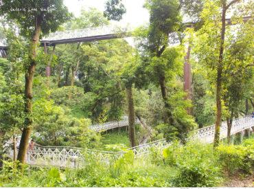 想找個貼近大自然的地方  又不用花太多時間 嘉義竹崎的親水公園是一個不錯的選擇