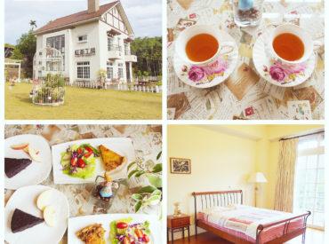 我們入住鄰近日月潭的民宿紅茶工房  這間以紅茶為故事主軸的民宿 老闆娘從小在紅茶樹長大  夫妻倆栽種自己的茶園  培育臺灣在地好茶