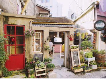老院子1951也是一間傳統的閩式老屋  用木頭樑柱和磚瓦屋頂搭建 保留了台灣古厝的原味  看起來有一種親切的熟悉感 隱身在小巷內  很難不被門口巧思的花草佈置吸引