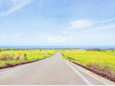 從網路上看到長濱金剛大道的優美  我們按圖索驥尋找照片中的畫面 金剛大道在長光梯田的產業道路上  緊鄰著金剛山因此命名