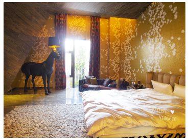 水舞行館以Urban Villa為設計概念  打造兼具精品和渡假旅店的風格 房間擺設復古藝術品  給人一 種低調奢華的感覺 選擇入住水舞行館是因為房間還附了三溫暖烤箱