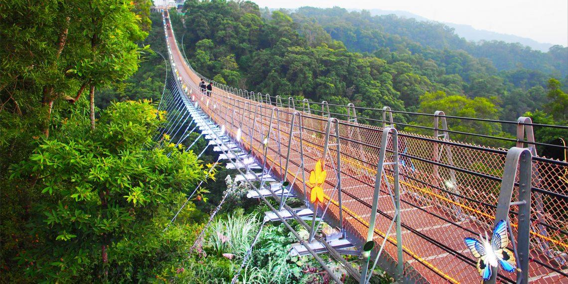 【南投 Nantou】猴探井風景區天空之橋  吊橋上欣賞一覽無遺的彰化平原及夕陽