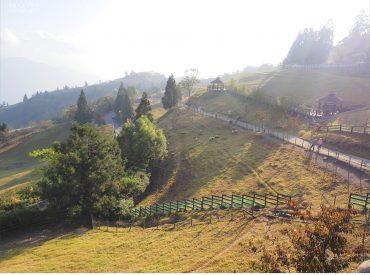 站在廣闊的青青草原  一覽合歡山與綿延的中央山脈 放牧的綿羊  高山杉木和歐式建築猶如阿爾卑斯山場景 看到這個熟悉的景色  我又再度來到清境了