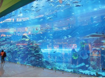 Dubai Mall是杜拜最大的購物中心  距離我們住的公寓酒店只有十幾分鐘路程 但要在杜拜這樣的天氣走上十幾分實在很考驗耐力  幸好酒店有提供接送服務