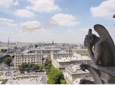 早晨起床後看到蔚藍的天空  決定前往巴黎聖母院 聖母院除了歷史悠久的教堂建築  登高俯瞰巴黎市景也是一大賣點 在雨果筆下更賦予它豐富的故事色彩 因為喜歡鐘樓怪人這部音樂劇  對聖母院也存在著浪漫的想像
