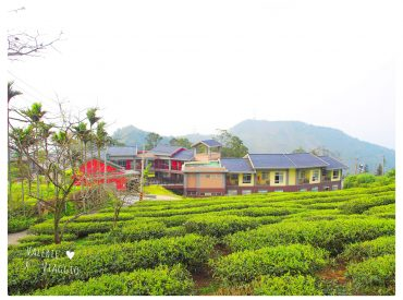 同樣皆為台灣最美的森林學校  都因為莫拉克風災而重建 我們拜訪了那瑪夏的民權國小  今天我們來拜訪另一間樟湖國小 是台灣的第一座森林生態中小學