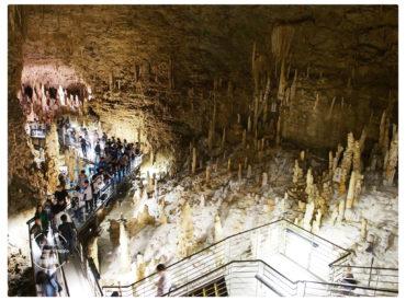進到玉泉洞先是搭乘超長的電扶梯 通道盡頭是一座巨大的洞穴 四周佈滿密密麻麻的鐘乳石 燈光照射在鐘乳石上 站在其中更能感覺洞穴的壯觀