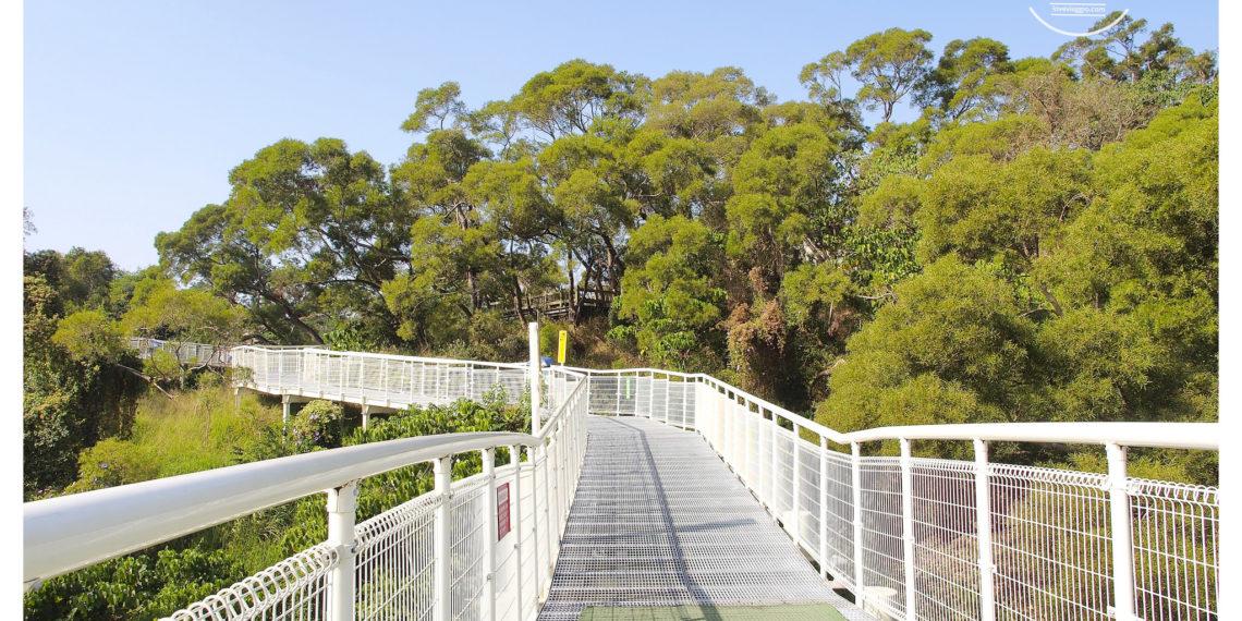 【彰化 Changhwa】八卦山天空步道 台灣最長高空步道 俯瞰大佛風景區 彰化市景