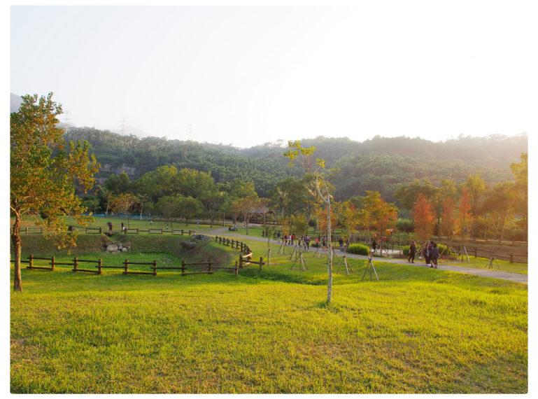 【嘉義 Chiayi】旺萊山愛情大草原 阿里山18號公路觸口牛埔仔 山腳下的大草原踏青品嚐下午茶