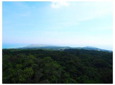 森林樂園佔地有76公頃 如果全部走完大概也要2-3個小時 裡面種 1200多種熱帶植物 主要著名景點為銀葉板根、石筍寶穴、觀海台、棲猿崖、垂榕谷、一線天等